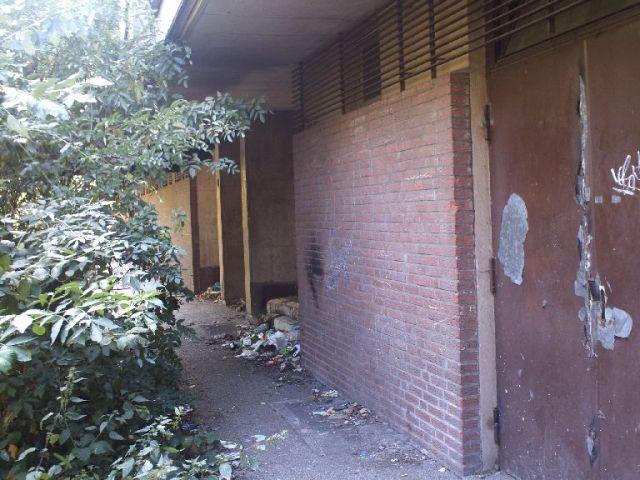 Blick auf vermüllte Gebüsche direkt am Gebäude